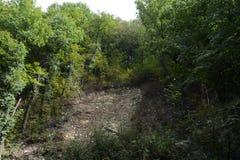 De plaats van doorbraak van water van de berg aan de rivier Adagum tijdens de vloed van 2012 in Krymsk Stock Afbeelding