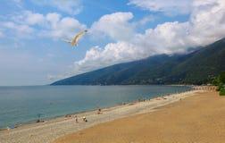 De plaats van het paradijs. Abchazië (Georgië) Stock Foto's