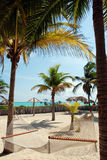 De plaats van het paradijs. Hangmat. royalty-vrije stock foto