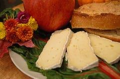 De plaatstilleven van de kaas Royalty-vrije Stock Afbeelding
