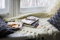 De plaid, hoofdkussens, boeken, koekjes ligt op het venster stock foto