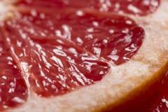 De plak van de grapefruit royalty-vrije stock afbeeldingen