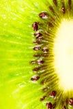 De plak van de kiwi Stock Fotografie