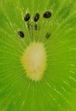 De plak van de kiwi Royalty-vrije Stock Foto