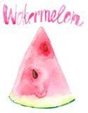 De plak van de Watercolourwatermeloen Stock Fotografie