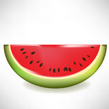 De plak van de watermeloen vector illustratie