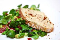 De plak van het brood met kikkererwtenhummus op een bed van groene salade Royalty-vrije Stock Fotografie