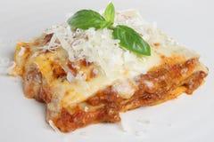 De Plak van lasagna's Stock Afbeeldingen