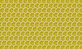 De plakken van de citroen Stock Foto's