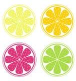 De plakken van de citrusvrucht Stock Foto's