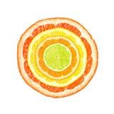 De plakken van de citrusvrucht Royalty-vrije Stock Afbeelding
