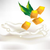 De plakken van de mango in melkplons met blad Stock Afbeelding