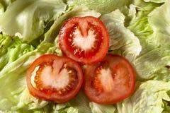 De Plakken van de tomaat op Salade stock afbeelding