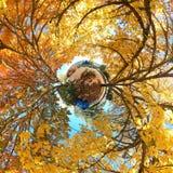 De planeet van Autunm Royalty-vrije Stock Foto