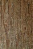 De plank stock foto