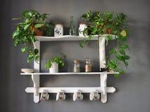 De planken sjofele elegant van de keuken royalty-vrije stock afbeeldingen