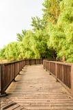 De plankweg langs de Yangtze-rivier royalty-vrije stock foto