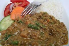 De plantaardige maaltijd van Korma Stock Fotografie