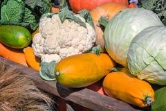 De plantaardige oogst wordt verkocht bij de markt stock foto
