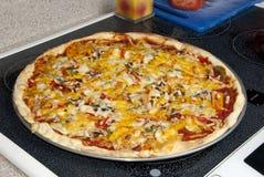 De plantaardige Pastei van de Pizza royalty-vrije stock foto