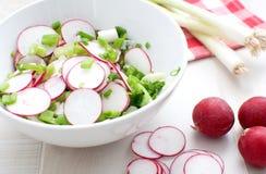 De plantaardige salade van de lente Stock Foto