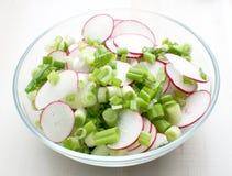 De plantaardige salade van de lente Stock Afbeeldingen