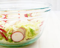 De plantaardige salade van de lente Royalty-vrije Stock Foto's
