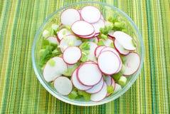 De plantaardige salade van de lente Stock Afbeelding