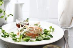 De plantaardige, verse rollsy lente Een gezonde vegetarische snack royalty-vrije stock afbeelding