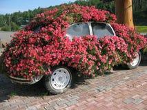 De Planter van Volkswagen Stock Afbeelding