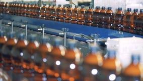 De plastic die bierflessen worden samen door de vervoerder worden bewogen stock videobeelden