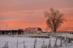 De plattelandswinter Stock Afbeelding