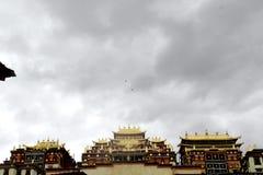 De plechtige tempel van het pijnboomklooster waarin de adelaar overheadkosten omcirkelde Royalty-vrije Stock Foto's