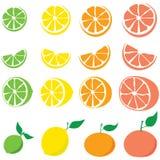De plons van de citrusvrucht Royalty-vrije Stock Fotografie