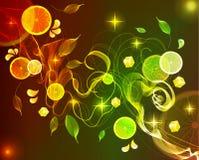 De plons van de sinaasappel en van het citroensap met abstracte golf Royalty-vrije Stock Afbeeldingen