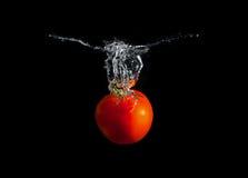 De plons van de tomaat Stock Foto's