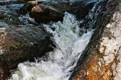 De plons van het water Royalty-vrije Stock Foto's