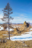 De pluche schommelt dichtbij het meer van Baikal Royalty-vrije Stock Fotografie