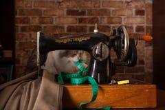 De pluizige kat speelt en steelt groene metende band Oude naaimachine stock afbeelding