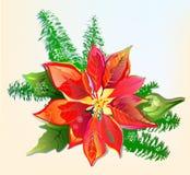De Poinsettia van Kerstmis vector illustratie