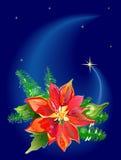 De Poinsettia van Kerstmis royalty-vrije illustratie