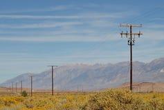 De polen van de macht in de bloeiende woestijn Stock Foto's