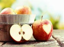 De pomme toujours affichage rouge mûr de durée Image libre de droits