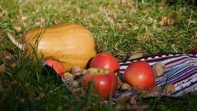 De pompoen, de appelen en de okkernoten liggen in het gras De appel rolt stock footage