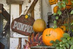 De Pompoen Autumn Display van het land Stock Foto's