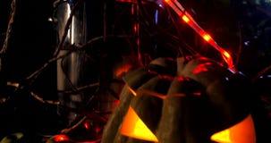 De pompoen en de ketel van Halloween in donker bos stock video