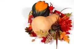 De pompoen van Butternut en van de eikel in de herfst het plaatsen Stock Foto