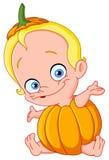 De pompoen van de baby Stock Afbeelding