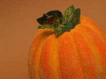 De pompoen van de herfst Stock Foto's