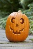 De pompoen van Halloween in de tuin Stock Afbeeldingen